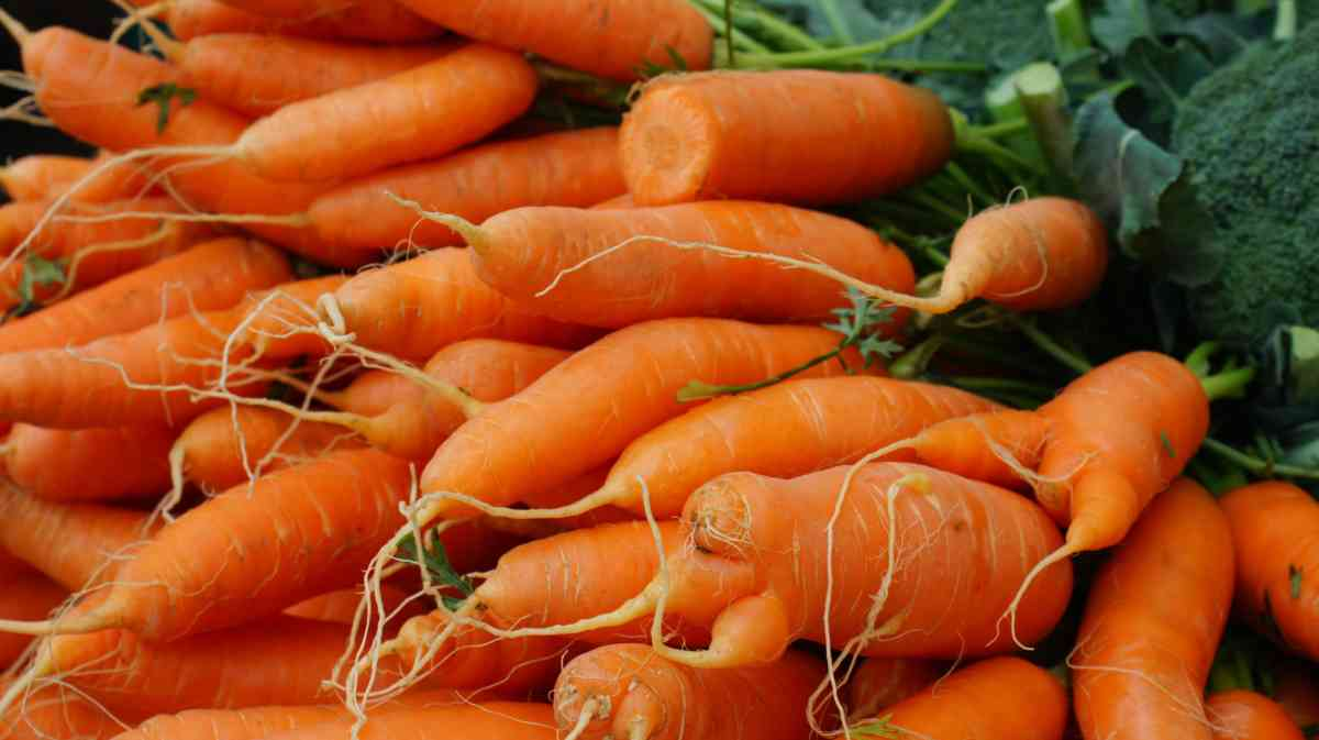 How to use carrot for skin health