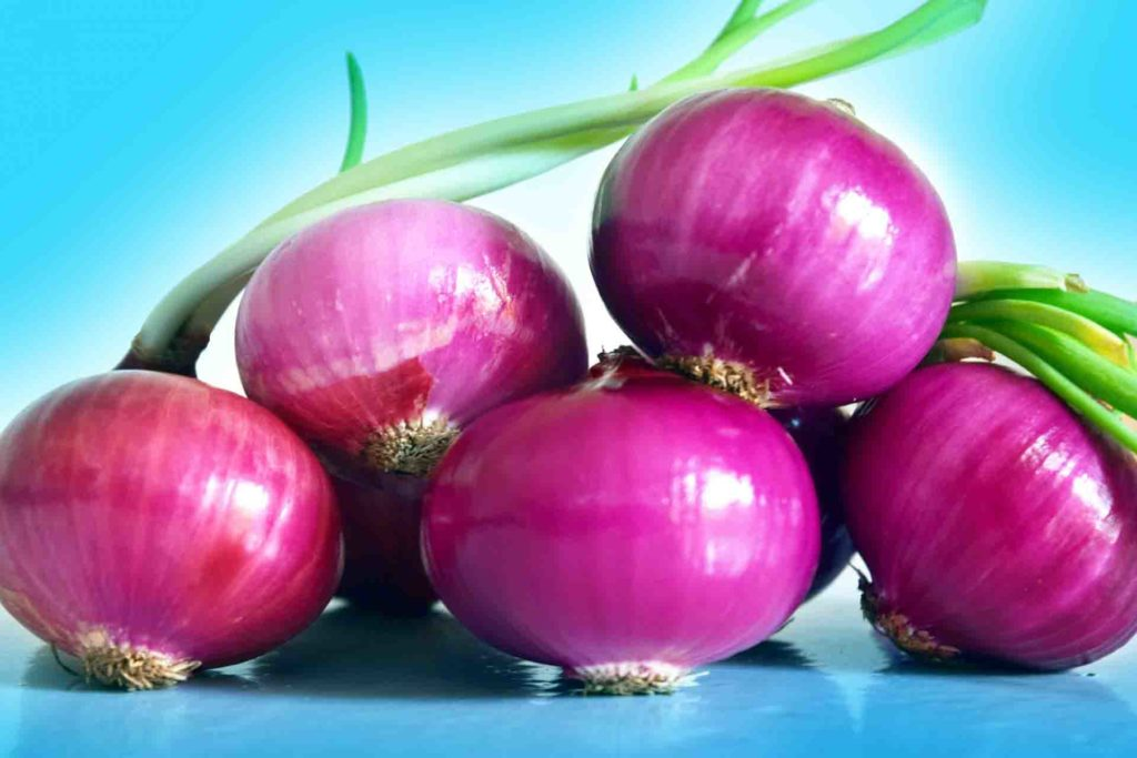Onion for Diabetes control