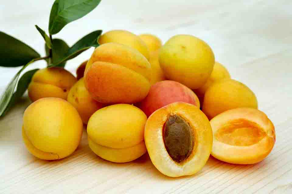 Apricots to improve eye health